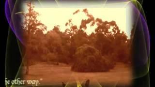 iNtO tHe GaRdEn  -   (Music -  Danny Elfman)