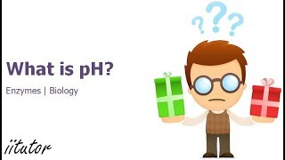 √ What is pH and why is it important? - Enzymes - Biology