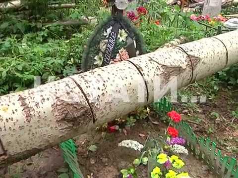 Стихийный нокаут - деревья, упавшие 3 месяца назад на захоронения, лежат там до сих пор