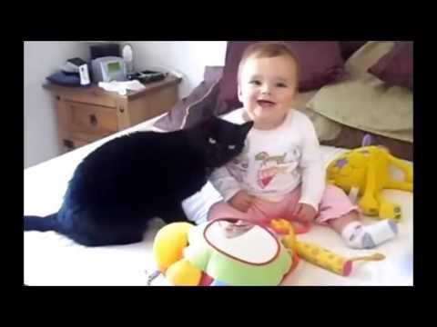 Anteprima Video Migliori momenti tra gatti e bambini...buona visione