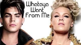 Whataya Want From Me - Split Audio (Adam Lambert & P!NK)