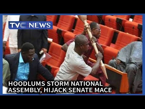 Video: Armed Thugs storm Nigeria's parliament and stole the mace