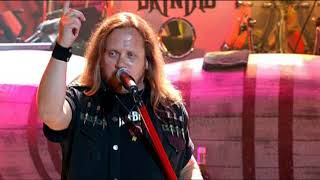 Lynyrd Skynyrd - That's How I Like it (The Vicious Cycle Tour)