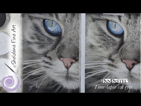 TIMELAPSE || PanPastel Cat Eye And Whiskers
