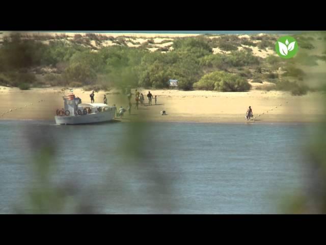 Playas de Cartaya. Patronato de Turismo de Huelva