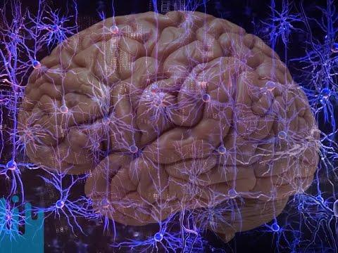 Novinky z vědy a techniky #109: Stáhněte si vědomosti - Vsauce