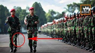 KISAH HARU KOPASSUS !! SEORANG PREMAN DITERIMA MELAMAR JADI TNI DAN MENJADI KOPASSUS