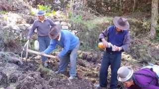 preview picture of video 'Comunidad Yumani, Isla del Sol - By Tundrablu'