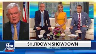 Gingrich: Battle With Trump Over Border Wall Could Be 'Very Expensive' for Dems Before Midterms