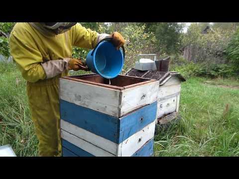 Пчеловодство.Как пчёлы выбрали сироп. Американский способ закормки пчёл сиропом в зиму.