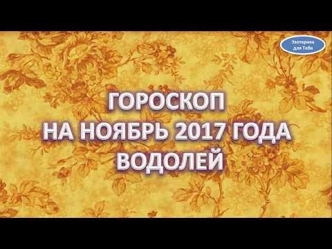 2017 год петуха гороскоп для стрельца
