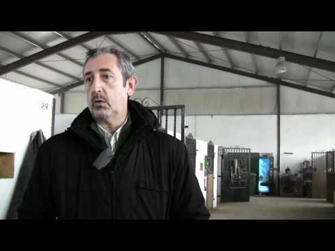 Equinoterapia en Bilau - Javier Anabitarte