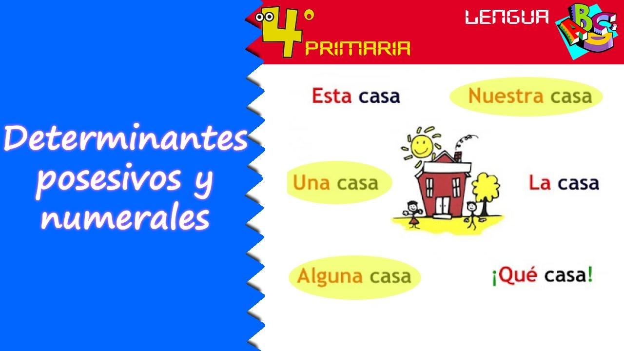 Lengua Castellana. 4º Primaria. Tema 4. Determinantes posesivos y numerales
