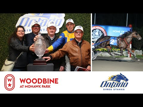 2019 OSS Gold Super Finals: 3YO Fillies Pace | Woodbine At Mohawk Park: October 12, 2019 - Race 10
