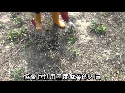 運用自然農法 開創永續生態村