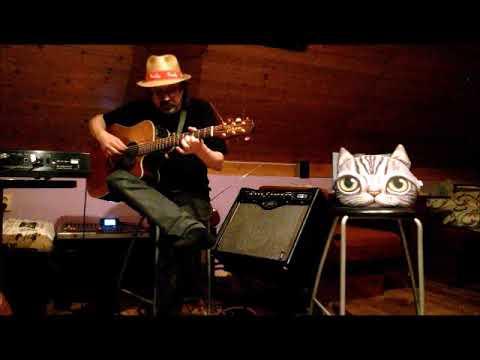 Lubomír Staš - Blues pro Kočku