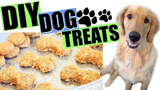 4 Ingredient DIY Dog Treats | Cooking in the Kitchen with Kids Collab!