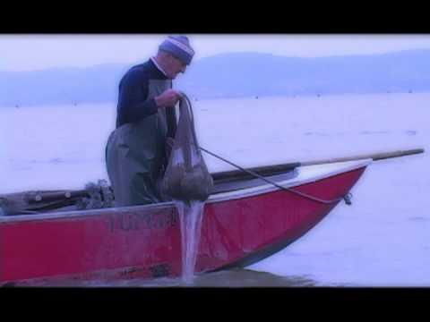 Comprare una causa invernale da una membrana per pescare in