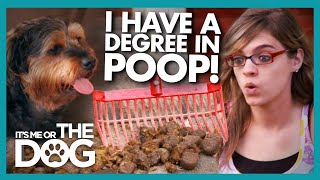 Teen Faces Harsh Reality of Dog's 'Lakes of Pee' and Poop | It's Me or The Dog