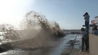 Người dân ven biển Gành Hào, Bạc Liêu lo sợ sạt lở bờ kè