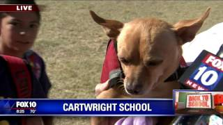Back to school: Cartwright School