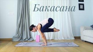 Как делать Бакасану. Бакасана для начинающих в йоге