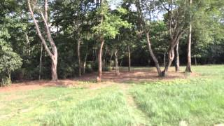 preview picture of video 'Chitwan National Park'