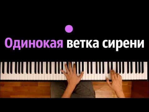 Валерий Залкин - Одинокая ветка сирени ● караоке   PIANO_KARAOKE ● ᴴᴰ + НОТЫ & MIDI