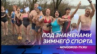 Новгородские моржи вышли на заплыв с флагами ко Дню народного единства