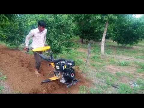 Kaushal Singh, a young farmer