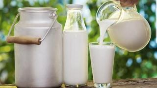 كارثة المكملات الغذائية والحليب المبستر