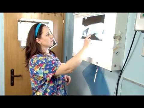 Kako napraviti injekcije s papaverin dibazola