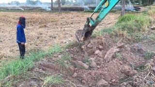 มี 2 สิ่งนี้หากินง่าย ?? Dogs & Excavator  งานนี้สนุก