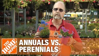 Annuals vs Perennials - Gardening Tips