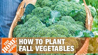 How To Plant Fall Vegetables | The Home Depot