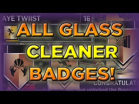 glass cleaner badges 2k19