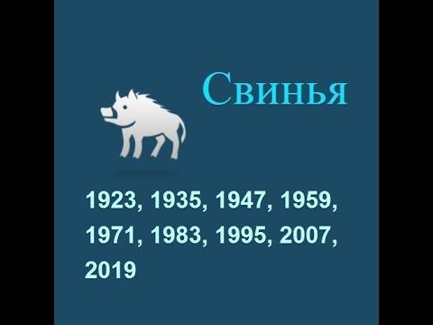 2007 год гороскоп весы на