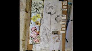 Botanical Journal Flip-Through