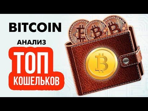 Криптовалюты основные