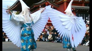 Japanese White Heron Dance - Shirasagi no Mai