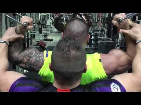 Wszystkie ćwiczenia na video mięśni pleców