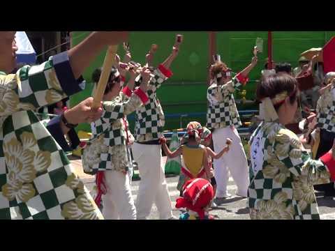 学校法人沢田学園みさと幼稚園 第65回よさこい祭り