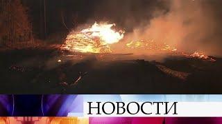 """Крупный пожар на территории парка """"Лосиный остров"""" этой ночью тушили спасатели."""
