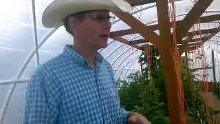 GeoThermal Greenhouse Works! LDSPrepper Tour Part 1