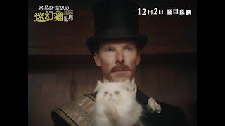路易斯韋恩的迷幻貓世界電影劇照1