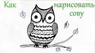Смотреть онлайн Рисуем глазастого совенка ручкой