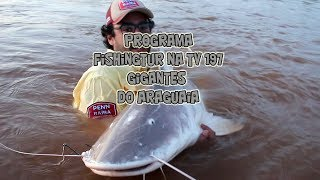 Programa Fisingtur na TV 197 - Rio Araguaia