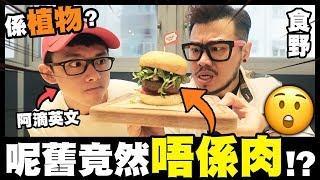 【食野】呢舊竟然唔係肉?係植物?w/ 阿滴英文