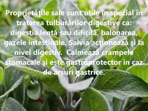 Herbagetica pachet de slabit