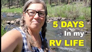 RV Life 5 Days in the Black Hills ( with Tips and Tricks